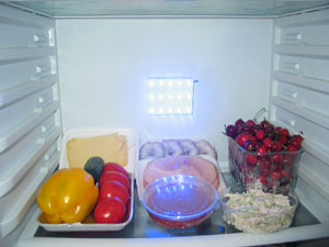 "A device to extend shelf time of food products ""AVERS –Freshguard"", Specification 5150-001-58568926-2010"